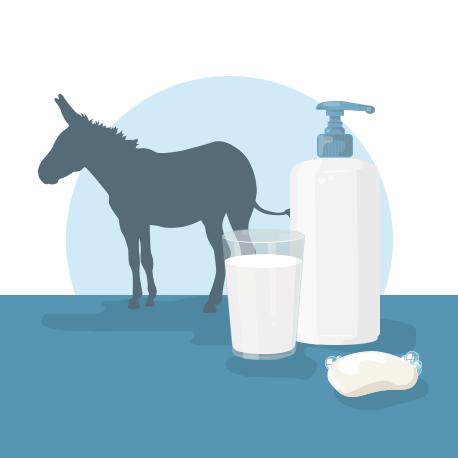 """Résultat de recherche d'images pour """"image lait d'ânesse"""""""